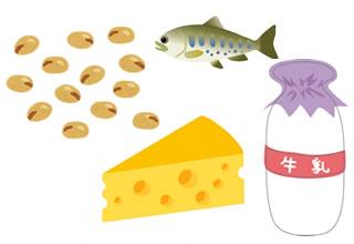 チーズ、牛乳、大豆、魚